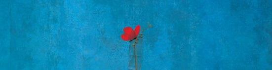 L'immagine poetica – di Gabriel Pacheco