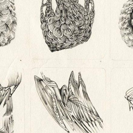 Ultranatura - mostra del Re delle Aringhe