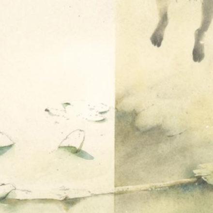 Workshop di illustrazione ad acquerello - con Marina Marcolin