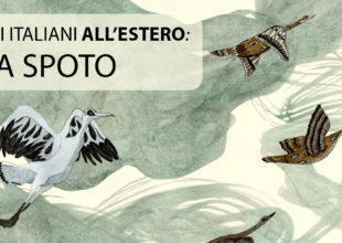 Illustratori italiani all'estero – intervista a Daniela Spoto