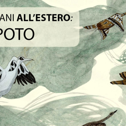 Illustratori italiani all'estero – intervista a Daniela Spoto
